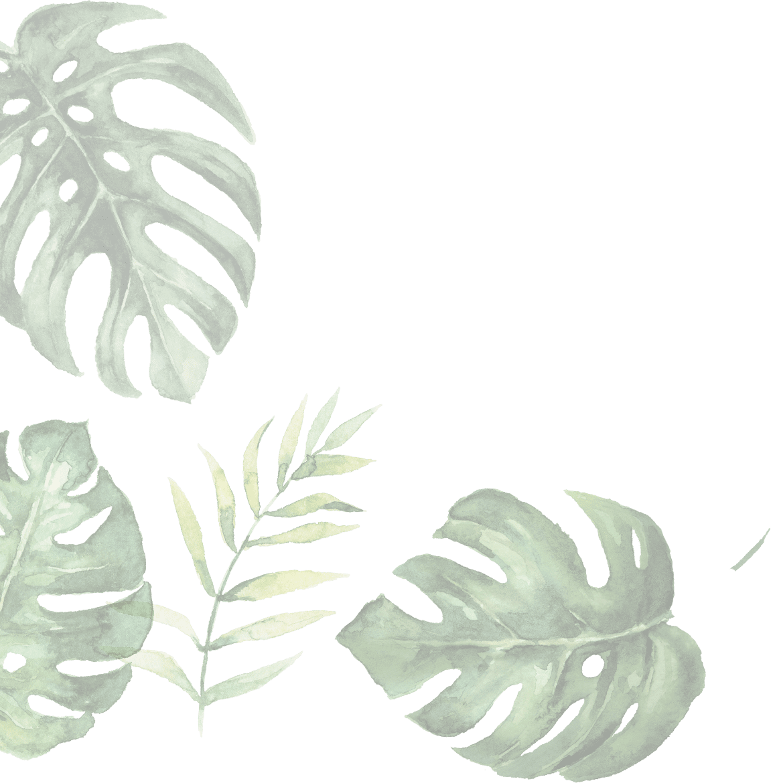 illustration of leaves